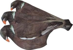 chaussette-a-pigeon-3d