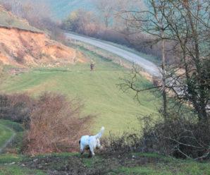 Chasse au domaine de Mont Banny (02)