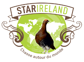 logo star ireland